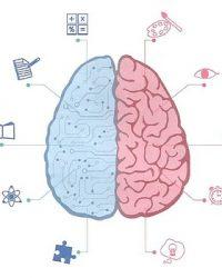 脳認知科学活用型人材診断